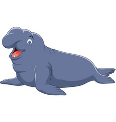 Cartoon elephant seal isolated on white background vector