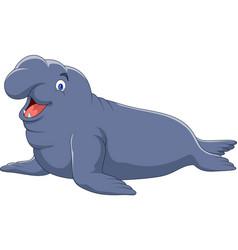 cartoon elephant seal isolated on white background vector image