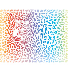 lynx canadensis background vector image