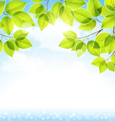 Natural background with leaves vector