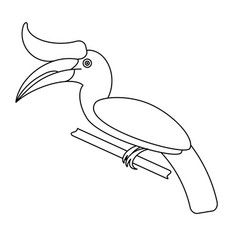 outline hornbill bird vector image