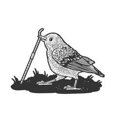 Sparrow pulls worm sketch vector