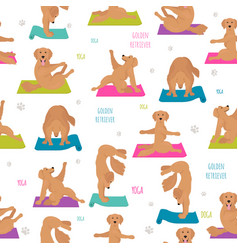 yoga dogs poses and exercises golden retriever vector image