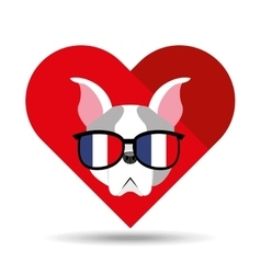 Cute dog pet with flag france glasses heart vector