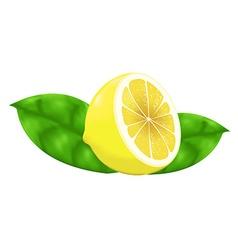 lemon gradient mesh vector image