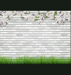blooming tree branch on brick wall background vector image vector image