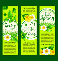 hello spring springtime flowers banners vector image vector image