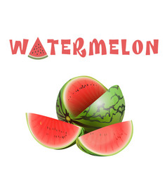 Fruit watermelon white background image vector