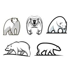 Set of cartoon polar bears vector