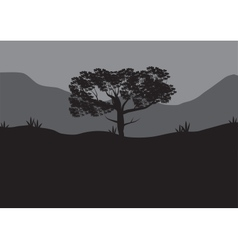 Silhouettes of shade trees vector