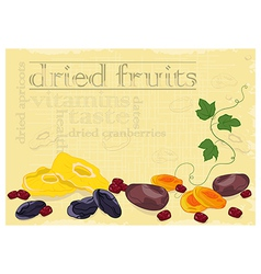 Dried fruits background vector image vector image