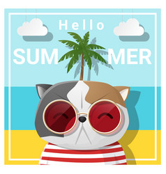 hello summer background with cat vector image