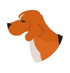 Pedigree dog head beagle vector image vector image