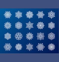 snowflake season nature winter snow symbol frozen vector image