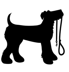 AIredale Terrier Leash vector image