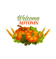 Autumn welcome fall pumpkin greeting poster vector