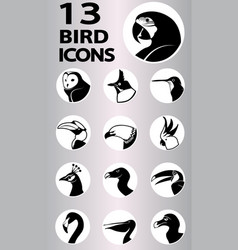 bird icons collection vector image