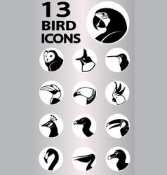Bird icons collection vector