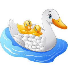 Cartoon mother duck with baduck floats on water vector
