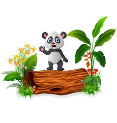 Cute baby panda posing on tree trunk vector