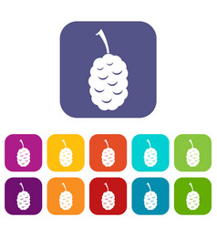 Fruit of mulberry icons set flat vector