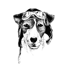 Hand drawn dressed up dog aviator vector image