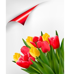 Holiday background with bouquet of red and yellow vector image