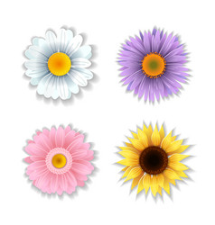 set of paper art flowers vector image