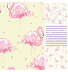 Set seamless backgrounds with pink flamingos and vector