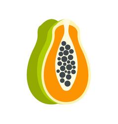 sliced fresh papaya icon flat style vector image