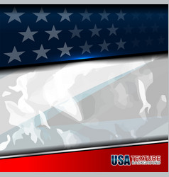 usa color flag texture vector image