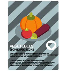 vegetebles color isometric poster vector image