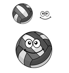 Two volleyball balls vector image