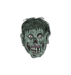 Zombie skull head drawing vector