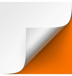 Curled corner of White paper on Orange Background vector image