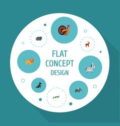flat icons hippopotamus wildcat trunked animal vector image