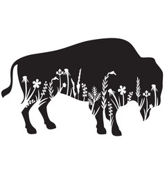 Floral american bison or buffalo and grass vector