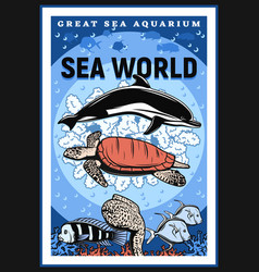 Great sea aquarium oceanarium underwater show vector