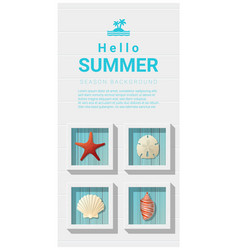 Hello summer background with sea creatures vector