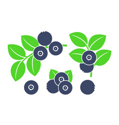 Huckleberry vector