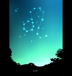 leo zodiac constellations sign with forest vector image