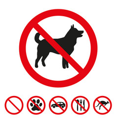 no dog sign on white background vector image