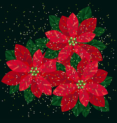 red xmas poinsettia gradient flowers vector image