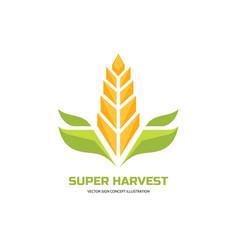 Super harvest - logo template cereal vector