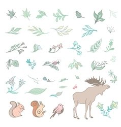 Set of Summer Forest Design Elements vector image