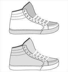 sports footwear vector image vector image