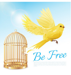 Canary flying from cage poster vector