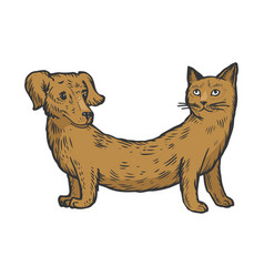 Cat dog fake animal color sketch engraving vector