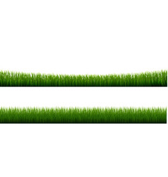 Collection grass border transparent background vector