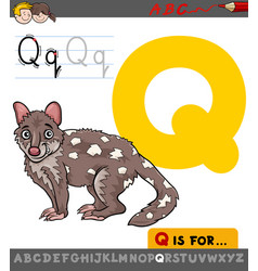 Letter q with cartoon quoll vector